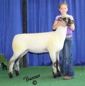 "Apple 15-9 NNP QR ""Gus"" Daughter 1st Place Early Jr. Ewe Lamb Purchased & Shown by Makayla Hitt"